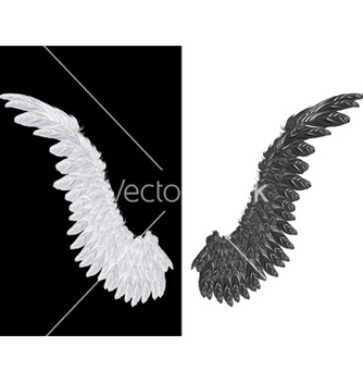 Free white and black wing vector - vector gratuit #233963