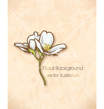 Free floral background vector - Free vector #240113