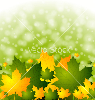Free colourful autumn backdrop vector - Free vector #242973