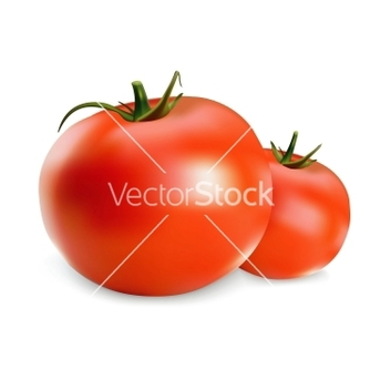 Free tomatoes vector - vector gratuit #243013
