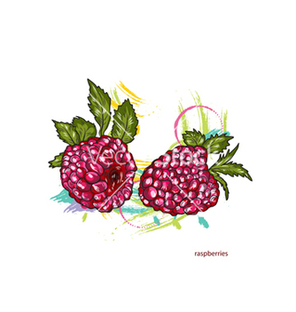 Free raspberries with colorful splashes vector - vector gratuit #243193