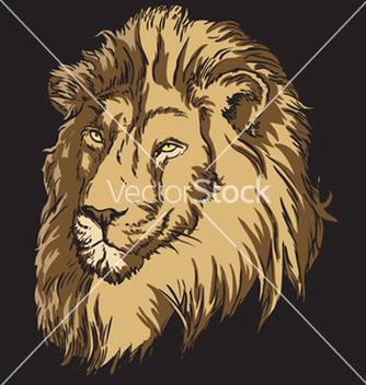 Free tshirt design with lion vector - Free vector #246243