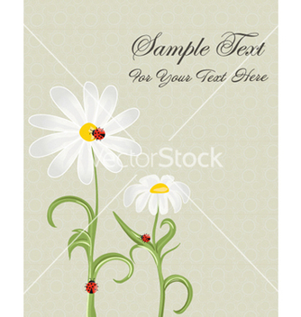 Free insects with floral vector - vector #255583 gratis