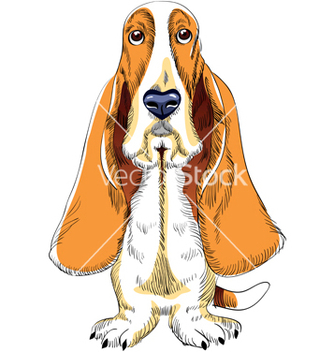 Free basset hound vector - Free vector #267313