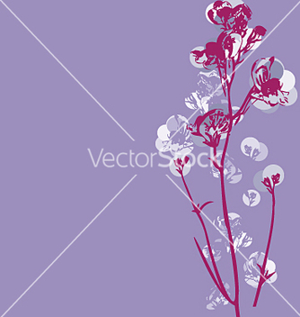 Free cherry blossom graphic vector - Free vector #271493
