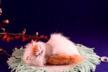 Sleeping cat - image gratuit #271913