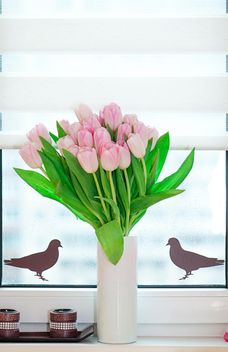 Bouquet of pink tulips - image #272583 gratis