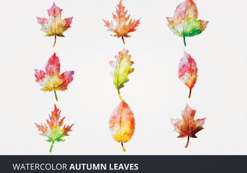 Watercolor Vector Leaves - vector gratuit #273233