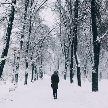 Girl in winter park - image gratuit #273893