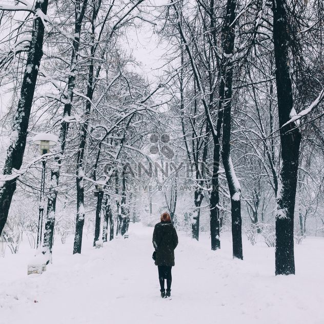 Girl in winter park - Free image #273893