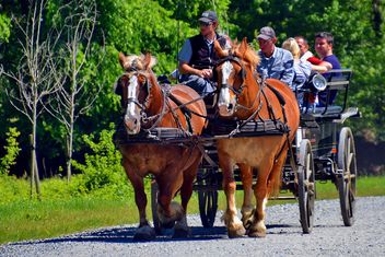 carriage drawn by two horses - image gratuit #274923