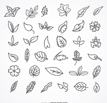 Stroke Leaves icon set - Free vector #275313