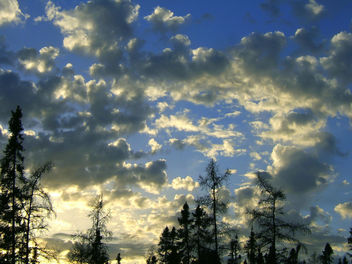 Cool Sky - Kostenloses image #276313