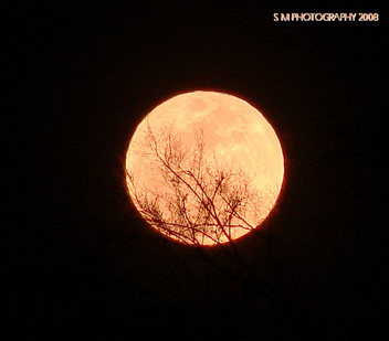 THIS EVENINGS FULL MOON - image gratuit #278143
