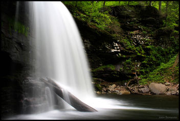 Ricketts Glen State Park - бесплатный image #278453