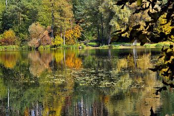 Autumn lake - image #280933 gratis