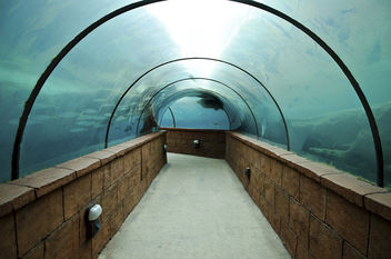 blue tunnel - image gratuit #281473