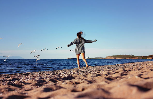 Girl chasing seagulls on beach - бесплатный image #282423
