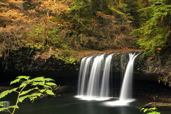 Upper Butte Creek Falls - image #285553 gratis