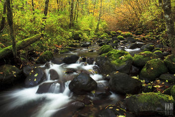 Butte Creek - Free image #285573