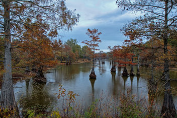 Harrell Lake 2 - image gratuit #290233
