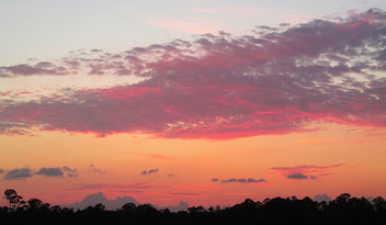 Purple Clouds - Free image #291883