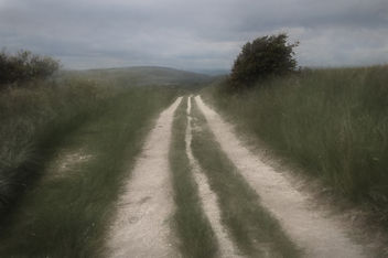 path over the south downs - Kostenloses image #294073