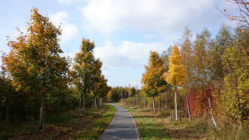 2014.10.12 - Berlin surroundings - Autumn Bike ride - Free image #294273