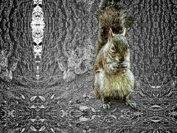 Squirrelly World We Live In - image gratuit #294503