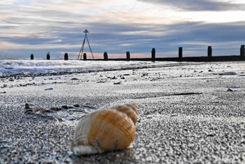Sea beyond the shell - image #295383 gratis