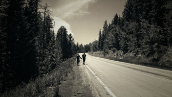 Let's go for a walk. - image gratuit #299543