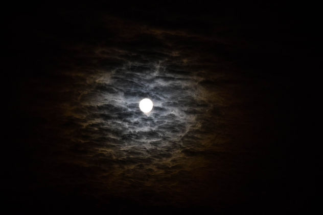 Full moon - Free image #300193