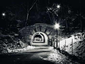 Inscope Arch at Central Park - image gratuit #301043