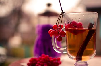 warm tea outdoor - image gratuit #302913