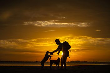 silhouette of man and dog at sunset - image #303983 gratis
