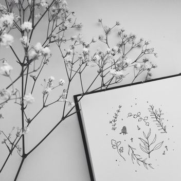 herbal drawing and flowers b/w - Kostenloses image #304123