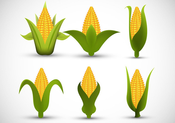 Ear of corn - Free vector #305593
