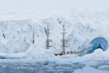 Bark Europa, Tallship in front of a glacier - Free image #306413