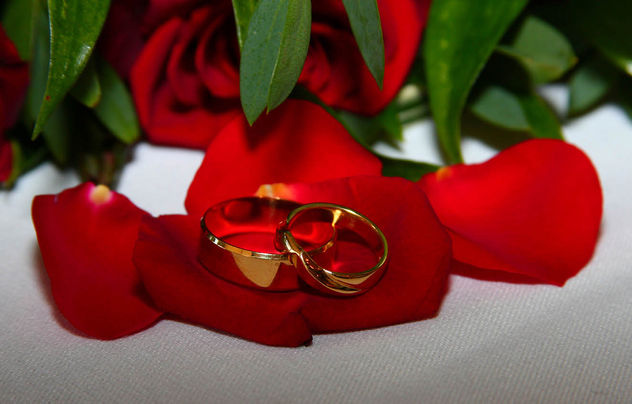 Wedding rings - image gratuit #308073
