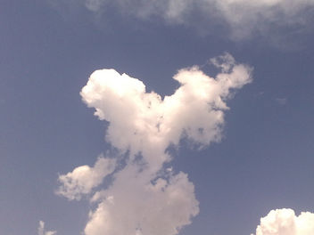 Love is in the air ! Literally !! - бесплатный image #308433