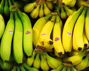 Yes, I Have No Bananas - Free image #309533