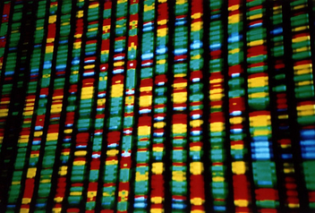 DNA representation - image #309563 gratis