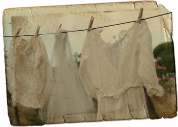 Washday - Free image #311413