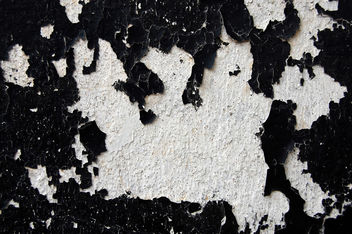 Black paint and white texture - Free image #313443