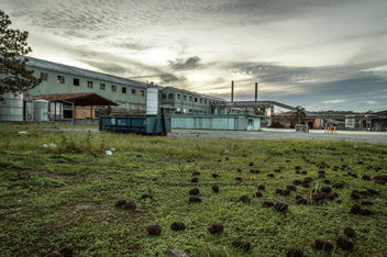 Abandoned Paper Mill - Kostenloses image #319443