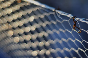 chickenwire - Free image #321053