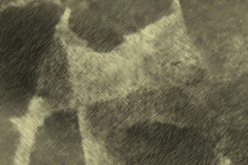 Light and Dark - Free Texture - image #324363 gratis