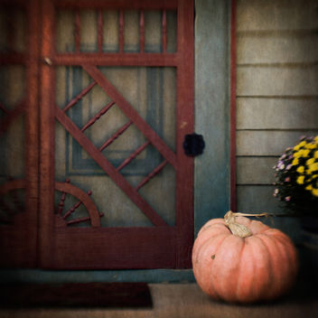Still Life with Pumpkin - image gratuit #324433