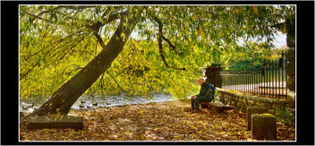 Autumn Shelter - Free image #327263