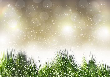 Free Christmas Pine Needle Vector - бесплатный vector #327923